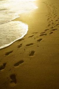 footprint-beach1